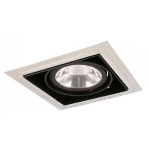 Gyro downlight