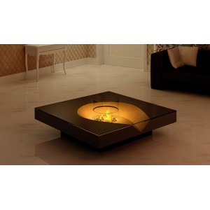 Single Illumo Fires Indoor Fires