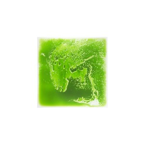 Liquid Floor Tile | Green | Liquid Tiles
